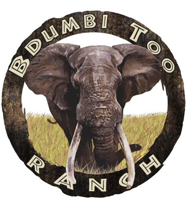 Bdumbi Too Ranch - Wildlife Game Breeders Thabazimbi Limpopo